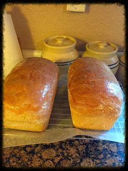 basic-bread2