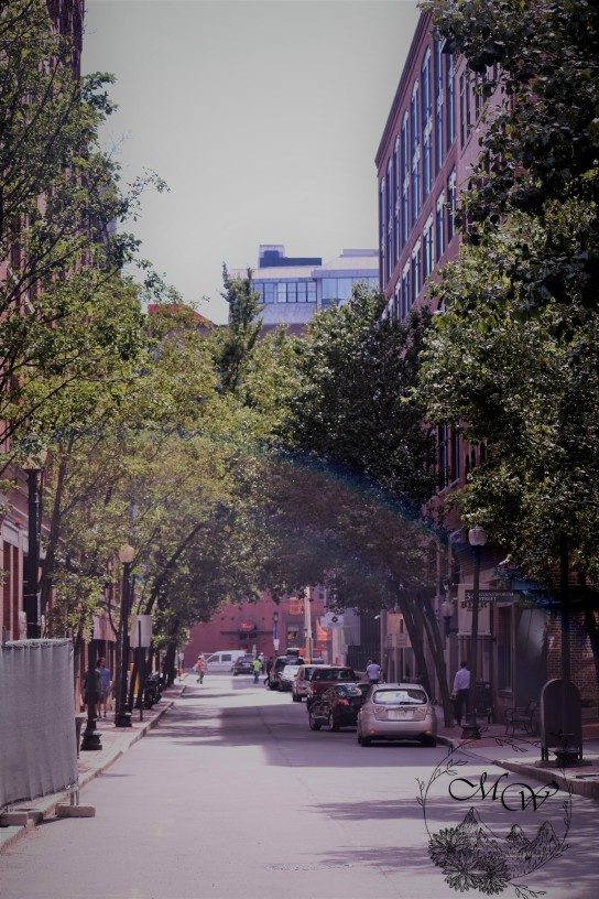 Boston Street View